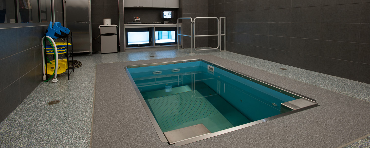 HydroWorx clean therapy facility